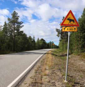 Mietwagenrundreise von St. Petersburg nach Murmansk